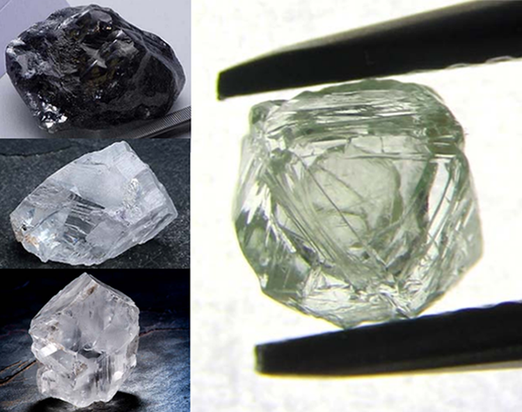 Year in Review: These Are the Rough Diamonds That Rocked Our World in 2019